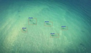 Shark-Detecting Drones To Patrol Australian Beaches | The Future of Drones, Rescue Missions, Flying Robots, The Future of Robotics